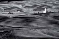 Collection: The Palouse